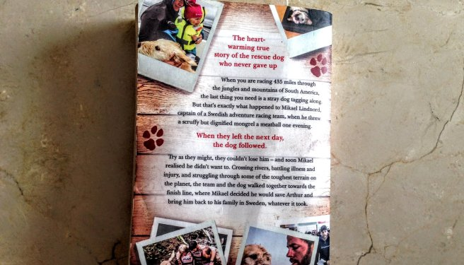 The back cover of the book 'Arthur''