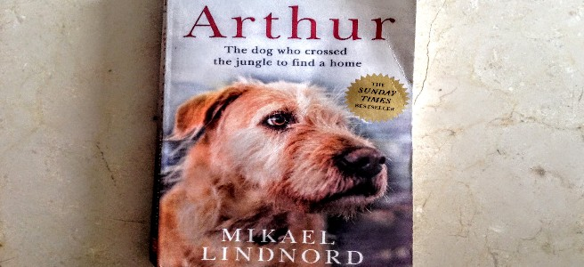The front cover of 'Arthur'