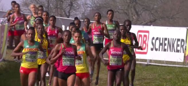 2019 World Cross Country Championships